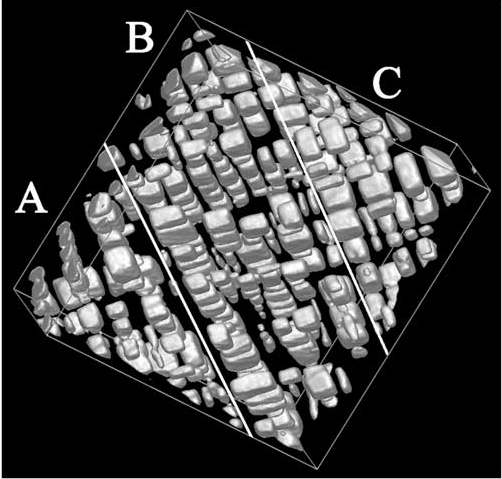 Reconstruction of cuboidal precipitates in a NiAl alloy